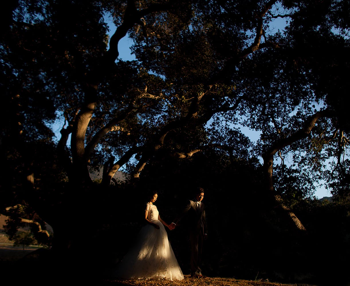 asian-california-hills-wedding0063