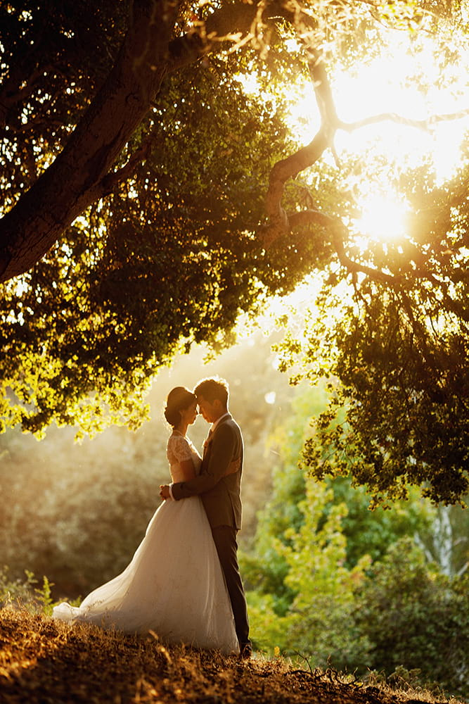 asian-california-hills-wedding0109